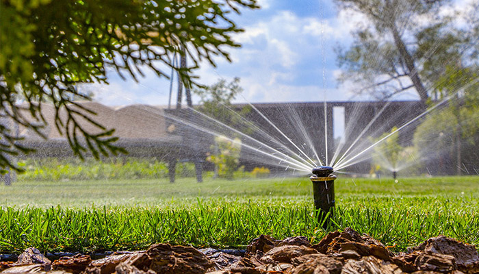 Successful Landscape Irrigation Company - Horry County, SC